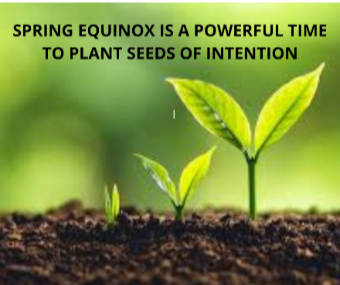 Newsletter March 2021 - Spring Equinox